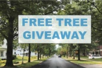 Pick up a free tree and stay cool!